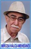 Col (r) Mircea Vâlcu.Mehedinti